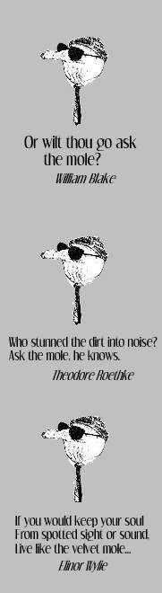 ask the mole